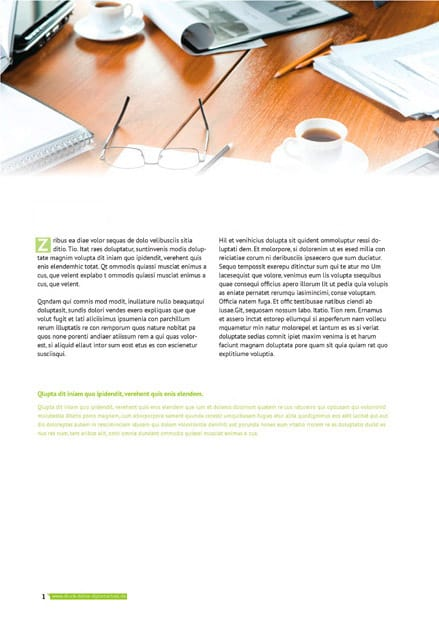 PDF Vorschau Inhalt